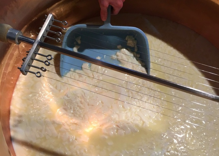 Cutting the curds