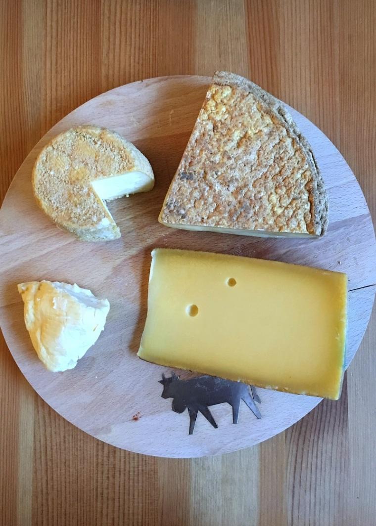 Ticino cheese