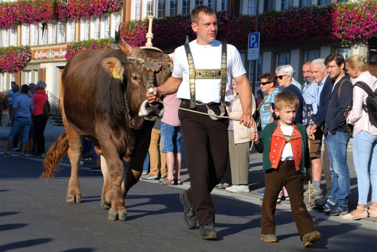 Farmer will bull in Appenzell